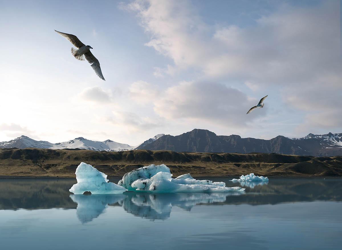 Jokulsarlon iceberg Iceland Wouter Boer Photography